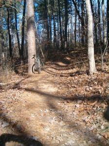 Berryman Trail, MO, Nov 6, 2009 003