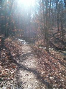 Berryman Trail, MO, Nov 6, 2009 004