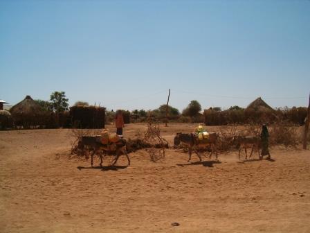 Denan/Dhanaan, Ethiopia in the Ogaden Desert