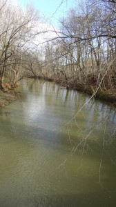South Branch of the Conewago Creek, looking North