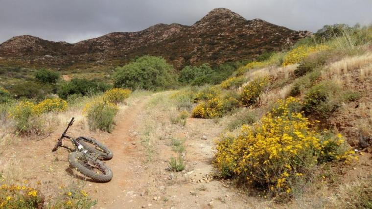 Fat Bike, Hollenbeck Canyon, San Diego