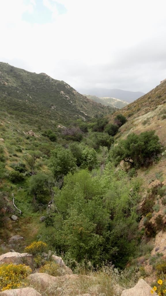 Hollenbeck Canyon, San Diego
