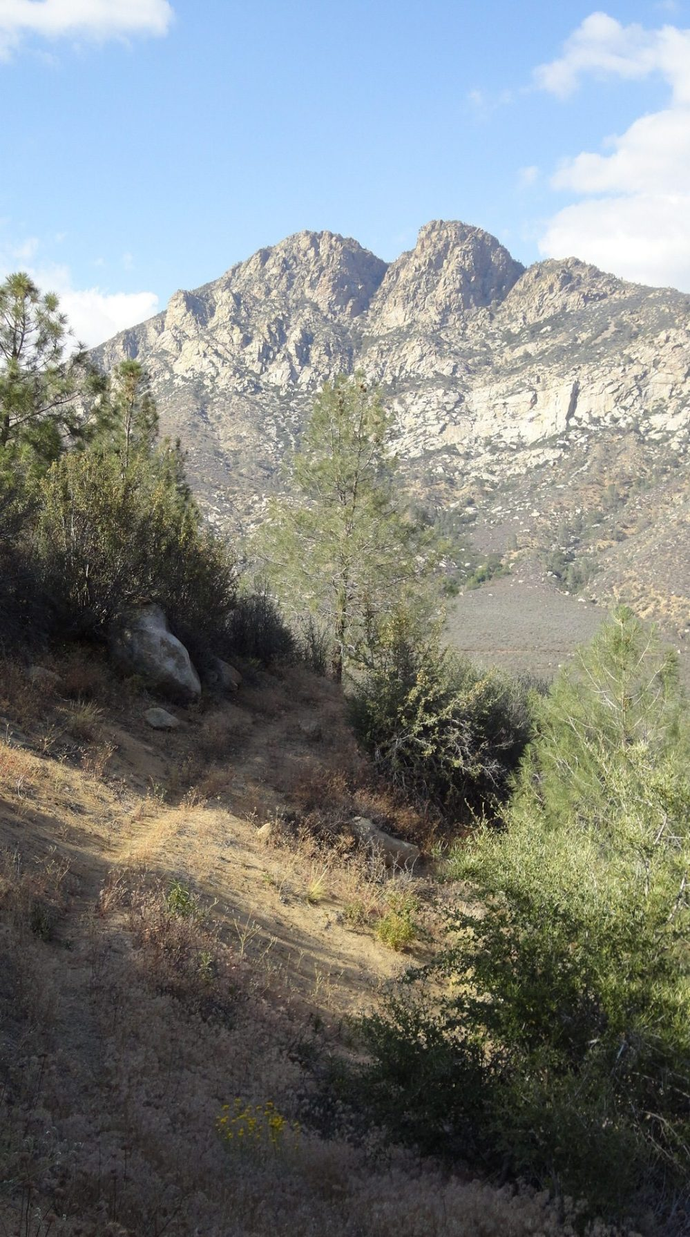 Whiskey Flat Trail