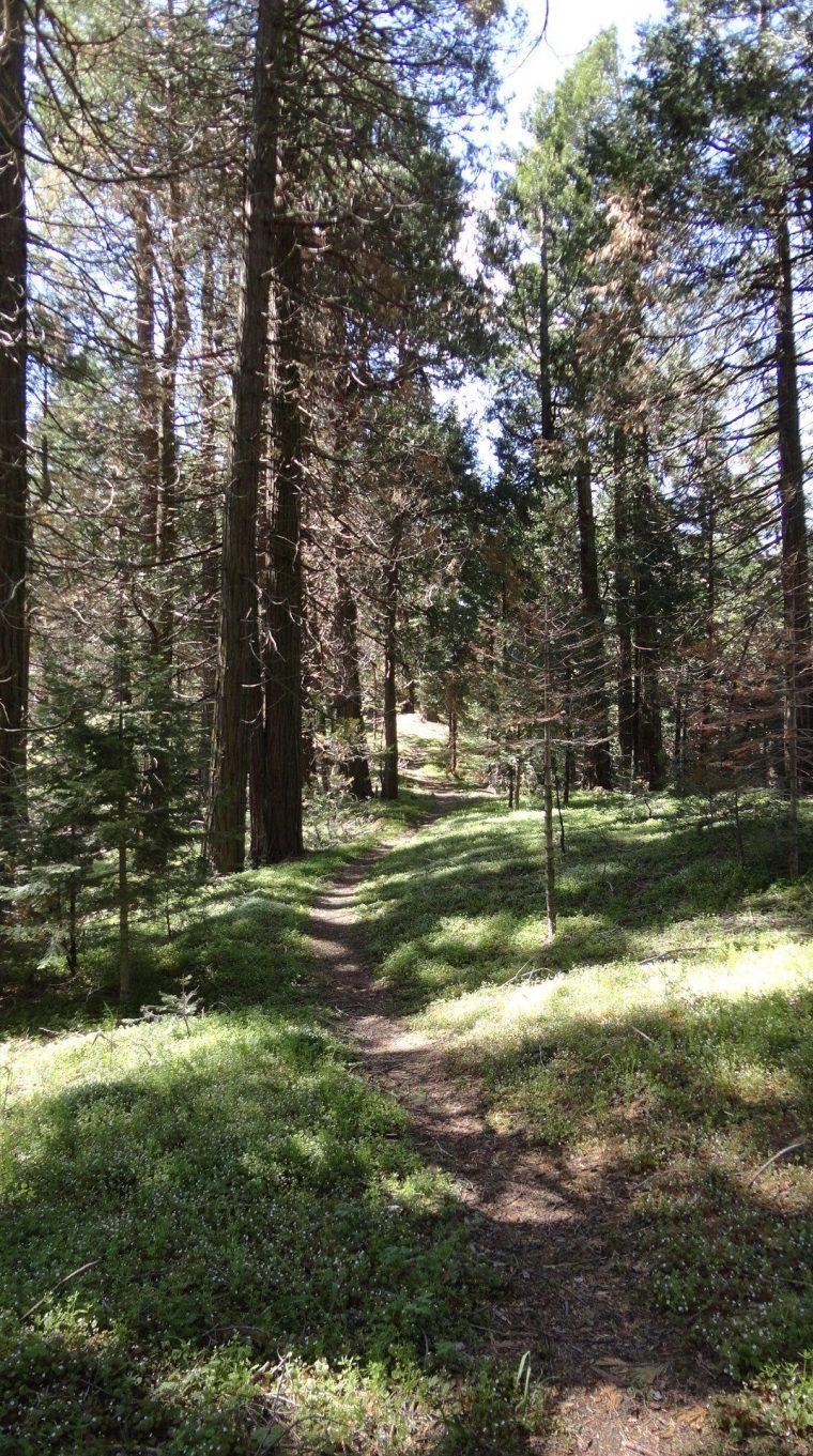 Unal Trail, Greenhorn Summit