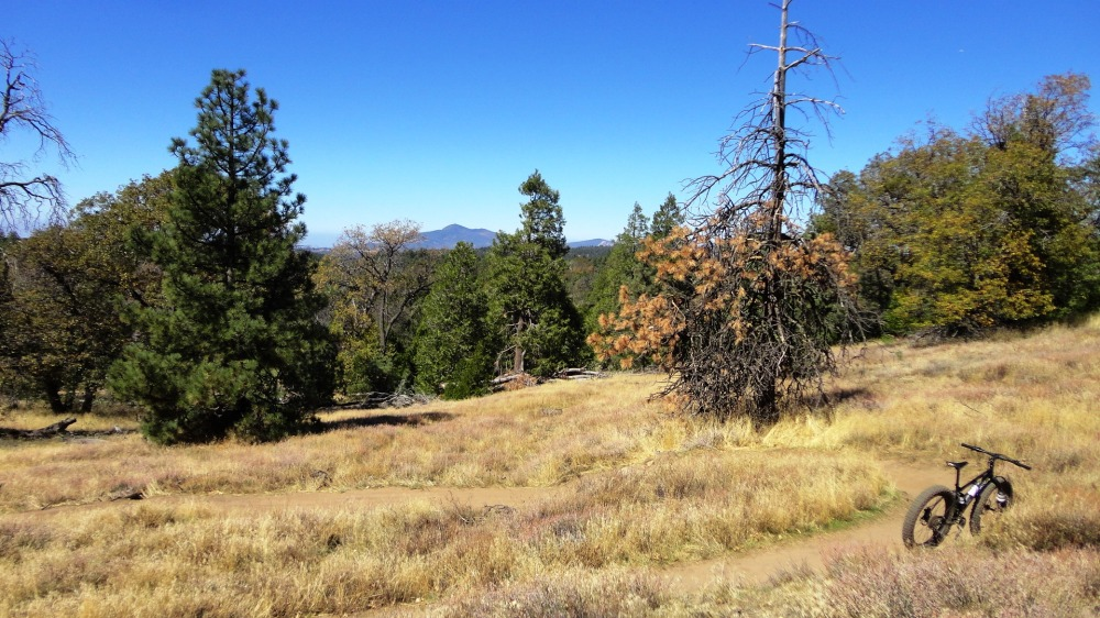 Los Gatos Trail, Laguna Mountains